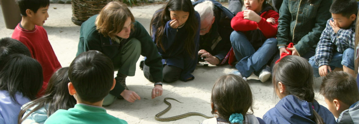 students with gopher snake